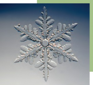 Snowflake image. Snowflakes are one prominent example of patterns appearing in the natural world